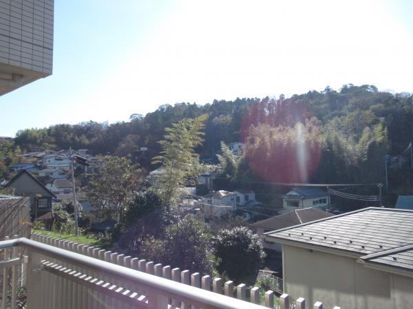 見晴らしの良い高台からの眺め