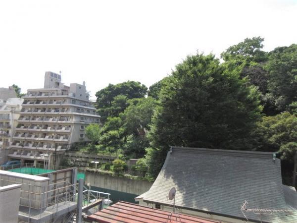視線の高さに建物がなく、緑の多い景観です