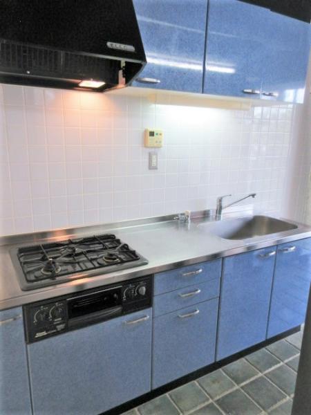 硬質な天井と床材が特徴的なキッチン。グリル付2口コンロ有