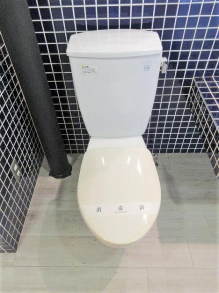 バストイレ別。お洒落なタイル張りです