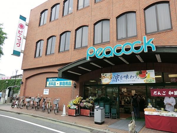 大丸ピーコック久我山店