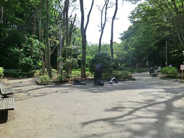 習志野市森林公園
