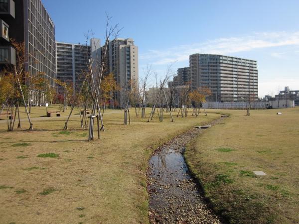 葛飾にいじゅくみらい公園