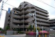ドラゴンマンション西高島平壱番館物件写真